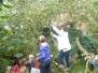 1kA & 1 kB : Uitstap appelboom en Herfstwandeling