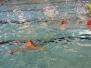 Januari 2017 : Funzwemmen